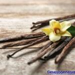 La vanille et ses bienfaits sur la santé